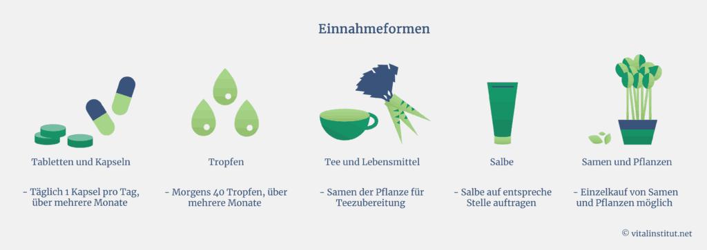Einnahmeformen von Mönchspfeffer